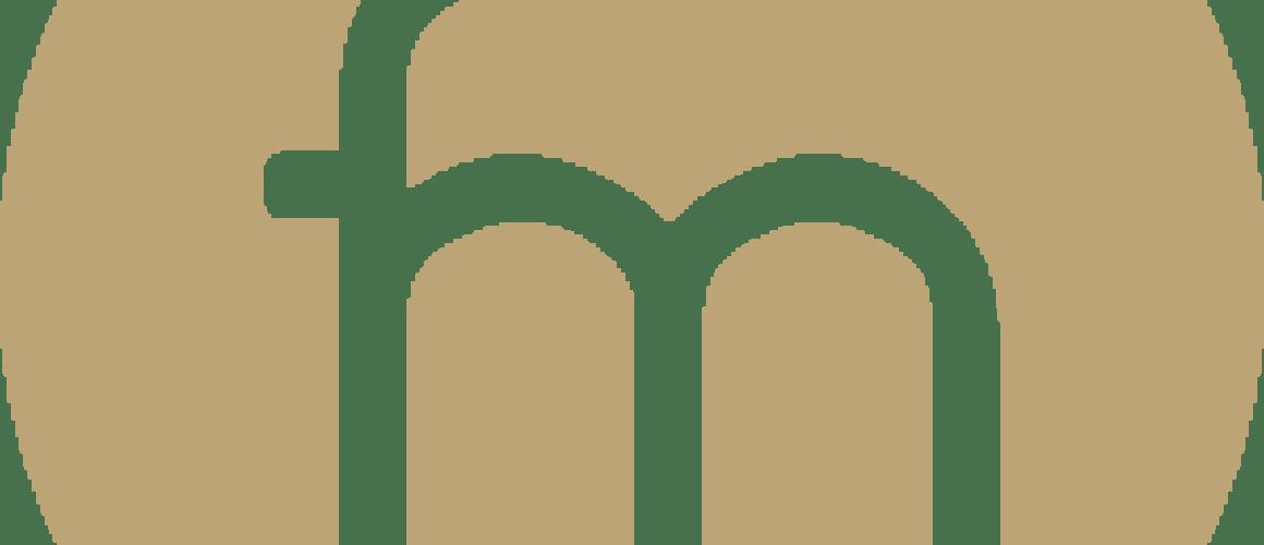 logo_FM_2020_color_point